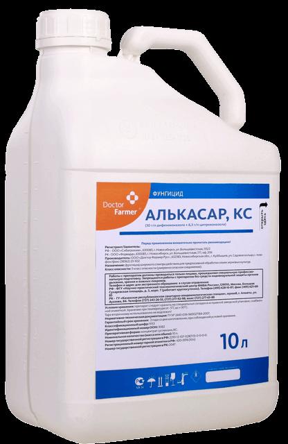 Alkasar_K